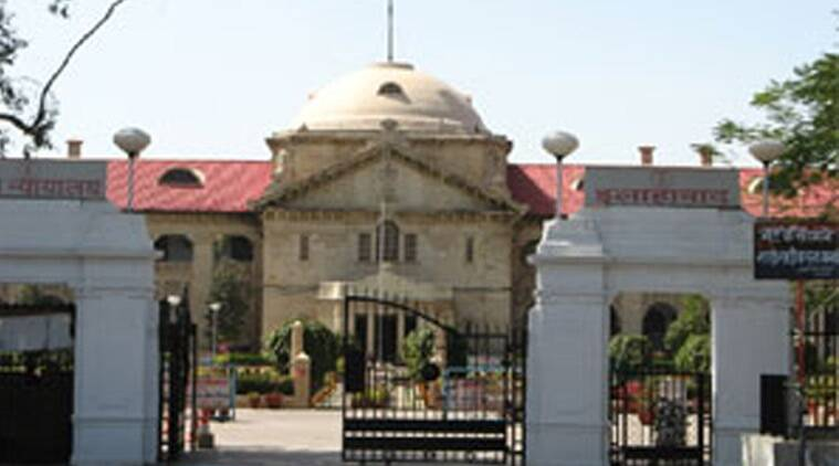 Allahabad High Court, Temporary bridges, Betwa river, Temporary bridges Betwa river, Betwa river Temporary bridges, Betwa river allahabad, india news, indian express news