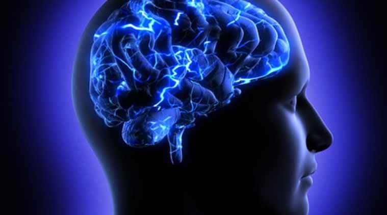 brain-759