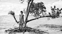 Living on the Brink: What will happen to the residents of the sinking Ghoramara island in the Sunderbans