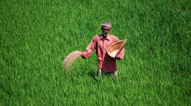 Indian Farmer Stock Images