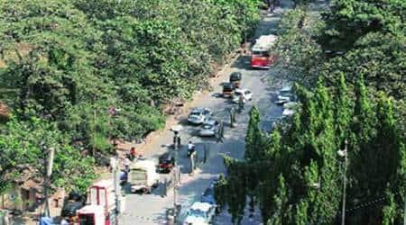 BMC, Aarey Colony , mumbai green lung, green lung, concrete plan, mumbai concrete plan, mumbai news, mumbai newsline, city news, local news