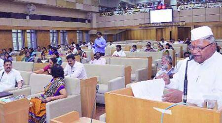 PMC Budget 2015: Wi-max, Shivsrishti, playgrounds and parks toppriority
