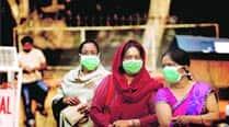 swine flu, swine flu death, swine flu disease, health news, delhi news, swine flu in delhi, city news, local news