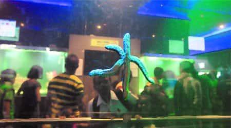 Longer queues, traffic snarls, but renovated aquarium fails toimpress