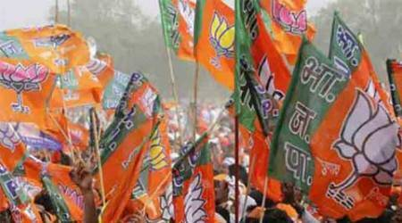 Bypolls in MP: BJP tickets to dead leaders' kin