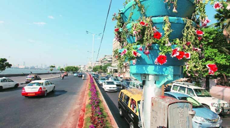 BMC, NPCCA, BMC garden, BMC garden department, plantation, marine drive, marine drive plants wile, plant wilting, mumbai news, city news, local news, mumbai newsline, maharashtra news