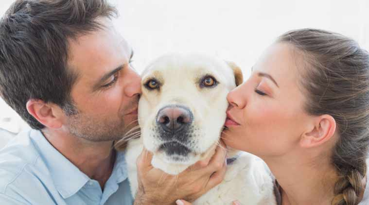 Five Reasons Why You Must Have A Dog At Home Lifestyle News The Indian Express