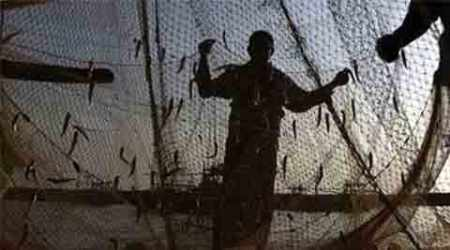 fishermen arrested, tamil fishermen arrested, sri lanka, indian fishermen, sri lankan navy, indian fishermen attacked, lankan navy indian fishermen,, sri lanka tamil nadu, tamil nadu sri lanka, tamil fishermen, tamil fishermen sri lanka, sri lanka news, india news, indian express