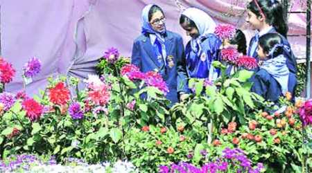 Gurdwara body holds flower show, painting competition