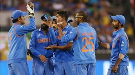 No Indian in ICC's World Cup XI