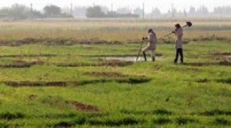 On day 3, Rajkot Municipal Corporation plot fetches Rs 18 crore