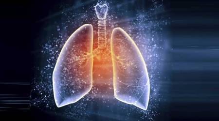 Can vitamin E protect lungs from air pollution?