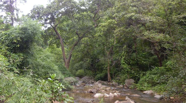 maharashtra-forest, Gramvan program, maharashtra forest department,