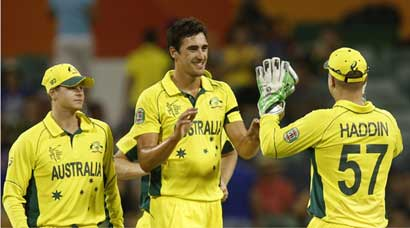 Australia's road to the World Cup final
