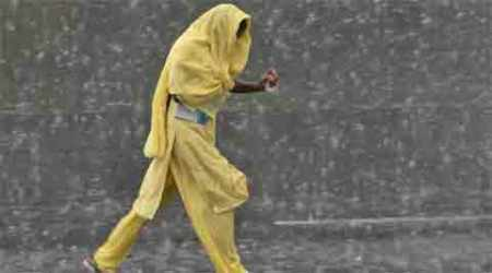 Rain hits mustard, wheat, chickpea crop in north and central states