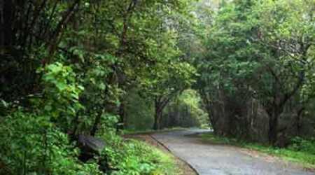 Goregaon Mulund road, Goregaon Mulund, Goregaon, Mulund, Mulund road, Goregaon road, Mumbai roads, Sanjay Gandhi National Park, SGNP, Mumbai infrastructure, Mumbai news