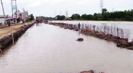 Those polluting Sidhwan Canal will be fined, jailed: DC