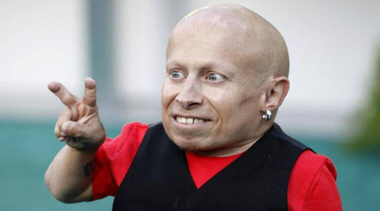 verne troyer harry potter