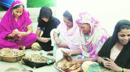Rs 60 for 1,000 beedis, rolling them usually a part-time job