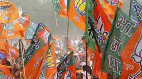 delhi, BJP, delhi municipal polls, delhi civic polls, municipal polls delhi, civic polls delhi, delhi mayor, delhi deputy mayor, mayor delhi, Delhi News, India News, BJP News