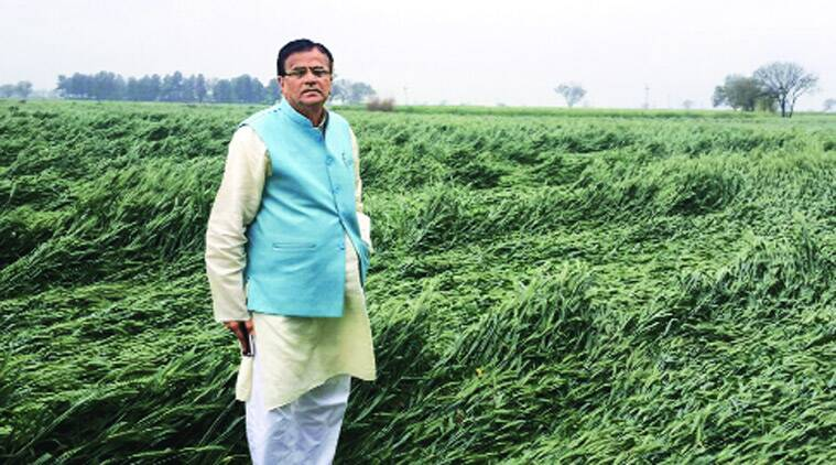 Om Prakash Dhankar, haryana government, haryana agriculture minister, seed bill, haryana seed bill, indian express news, india news