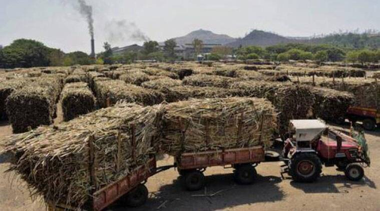 farming, agricultural reform, economic reform in India, APMC, regulated mandis, Farmers' market, NDA govt, Narendra Modi govt, China govt, National Agriculture Market, india news, agriculture news, latest news, Indian express,