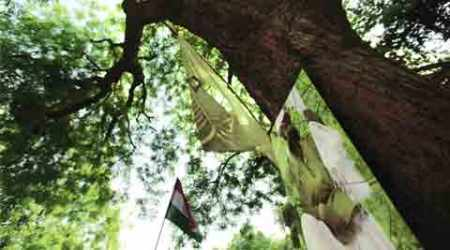 AAP workers egged farmer on, death an accident: Policereport