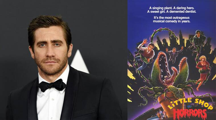 Jake Gyllenhaal, Little Shop of Horrors