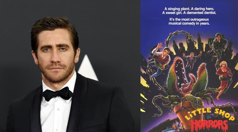 Jake Gyllenhaal, Little Shop of Horrors