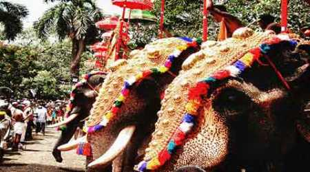 Kerala High Court allows fireworks for Thrissur Pooram festival withconditions