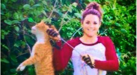 Texas vet fired for killing cat with a bow and arrow