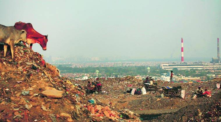 Okhla solid waste management, SDMC, Delhi solid waste management, delhi news, Indian express news