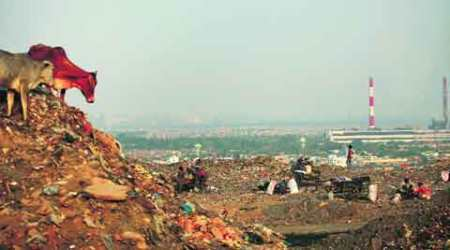 pcmc, pimpri chinchwad, pimpri, chinchwad, punawale landfill site, pmc, pune municipal corporation, pune news, india news