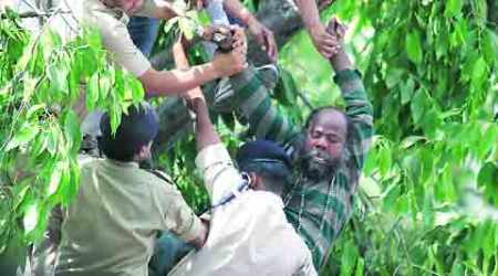 Man climbs tree at farmers' protest, Congress workers bring him down
