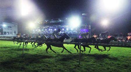 horse racing, night horse racing, night racing, night racing mumbai, horse racing mumbai, horse racing in night, mumbai news