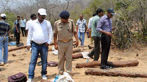 red sander, red sander killings, AP red sanders, AP police, Andhra red sanders, Andhra red sanders woodcutters, Chittoor killings, tirupati killings, Chittoor red sanders killings, NHRC, Human Rights commission, red sanders NHRC, Andhra red sanders NHRC, india news, Andhra news, national news