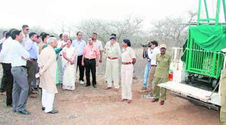 CM Anandiben Patel goes on safari in Gir national park