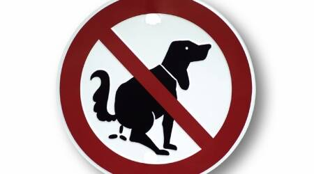 Panchkula MC To Impose Penalty From August 1: Letting your dog poop in open? Then be ready to shell outmoney