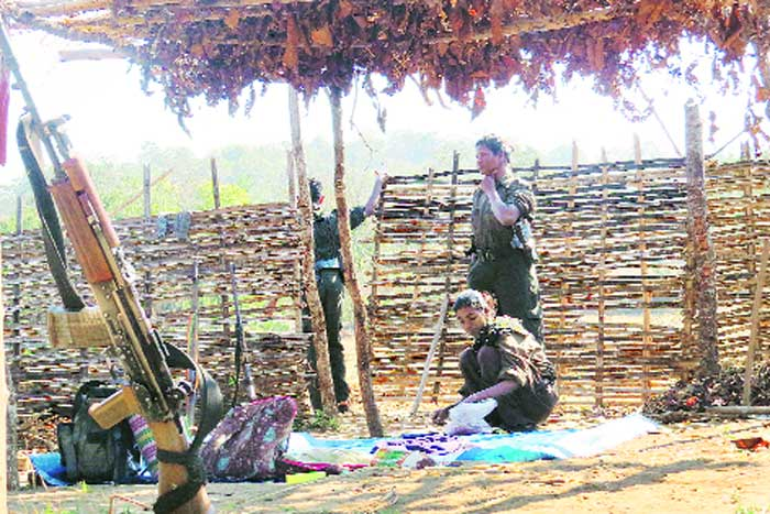135 killed in Bastar, including Maoists, civilians and police informers, since Feb 2014; 50 killed this year