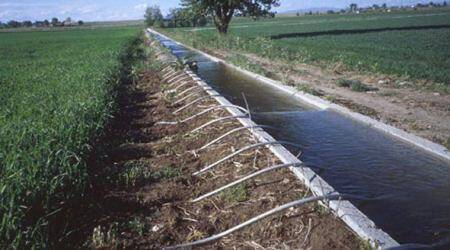 Irrigation work: 88 per cent tenders quote lower rates in Maharashtra