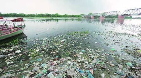 37 garbage points along drains to check Yamuna pollution