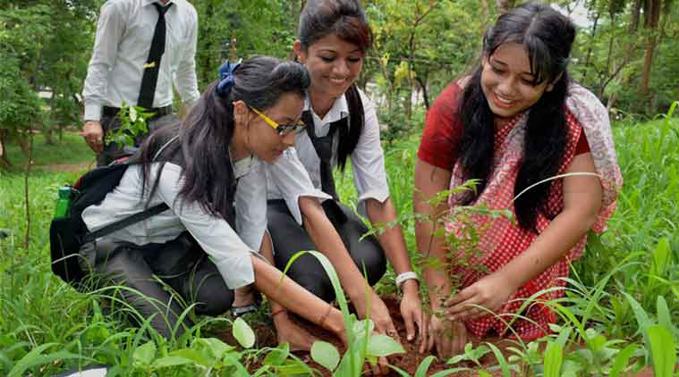 world environment day, world environment day 2015, world environment day theme, environment day, environment, Pollution, afforestation, planting trees