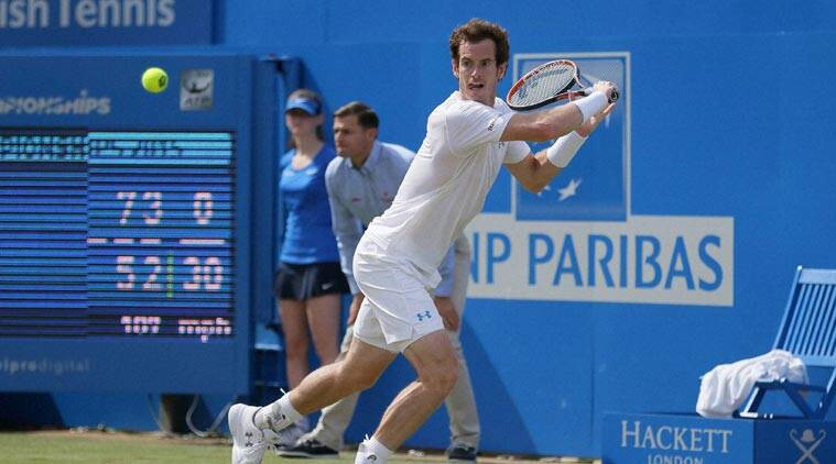 Andy Murray, Andy Murray Quenns Title, Andy Murray Aegon Championships, Andy Murray Tennis, Tennis Andy Murray, Tennis News, Tennis