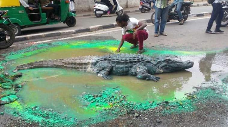 bangalore crocodile, bengaluru crocodile, crocodile in bangalore pot hole, bengaluru pot hole crocodile, Bangalore artist crocodile in road, Bangalore artiste, Artist Baadal Nanjundaswamy, Bangalore artiste Baadal, Baadal crocodile, BBMP officials, Bangalore latest news, Indianews, Bangalore news, Bengaluru news, latest news