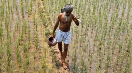 1177 cases against private financiers amid farmer suicides in Karnataka