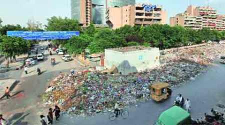 delhi, delhi sanitation workers, sanitation workers strike, delhi sanitation workers strike, ngt, delhi high court, delhi news, nation news