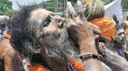 Kamakhya ushers in annual festival, with annual cannabis problem