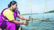 Rs 6,000 investment and 15 months later, 10 women reap rich dividends from oysters