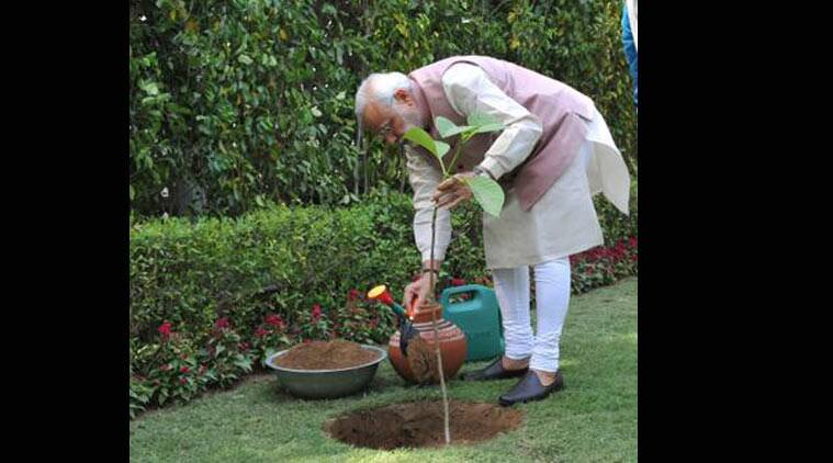world Environment Day, Narendra Modi, Narendra Modi world Environment Day, world Environment Day india, world Environment Day, narendra modi Kadamb sapling, narendra modi world Environment Day, world Environment Day politiciains, india news, indian express news