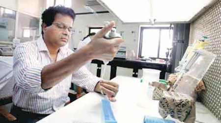 Beef in a petri dish: A day in the life of Shrikant Lade